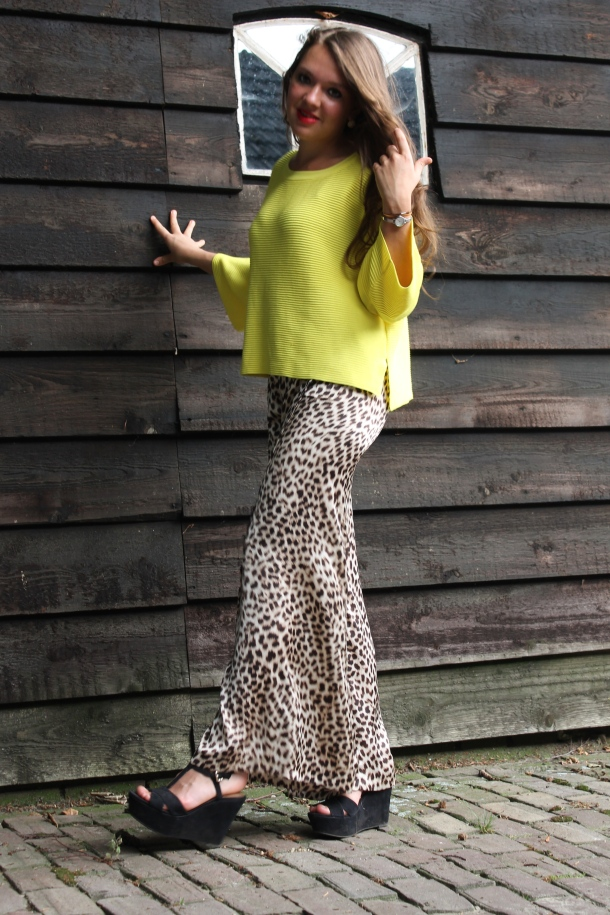 Flared Leopard Pants